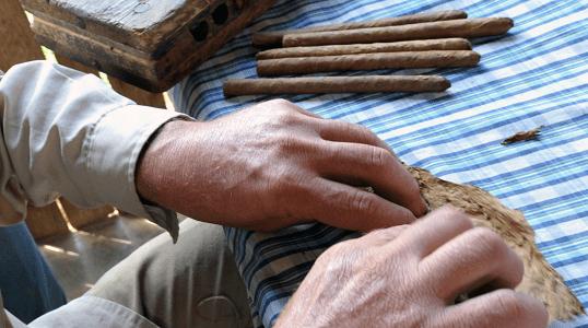 Fazenda de tabaco