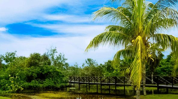 Ciénaga de Zapata em Cuba