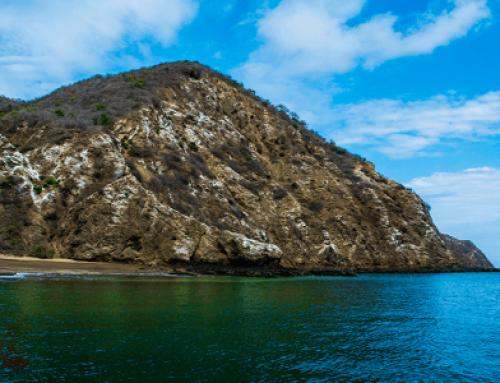 O que fazer em Isla de la Juventud?